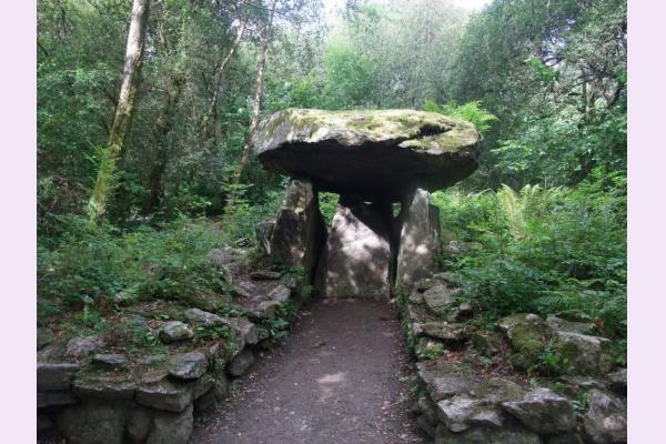 The Irish National Heritage Park | Tourist Attraction